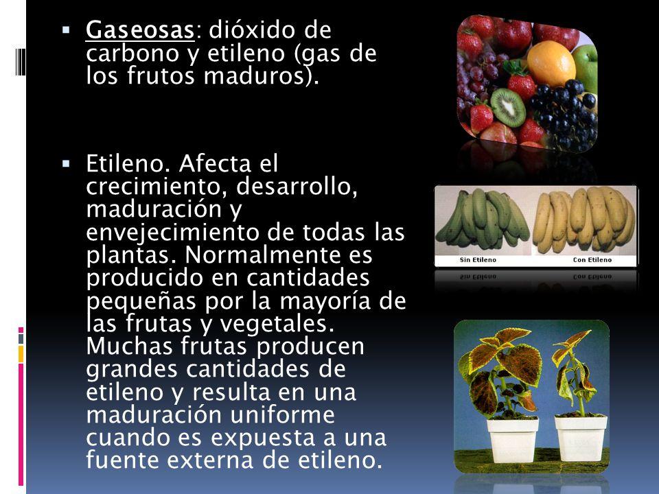 Gaseosas: dióxido de carbono y etileno (gas de los frutos maduros).