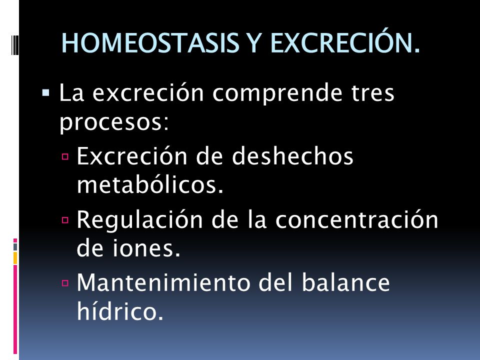 HOMEOSTASIS Y EXCRECIÓN.