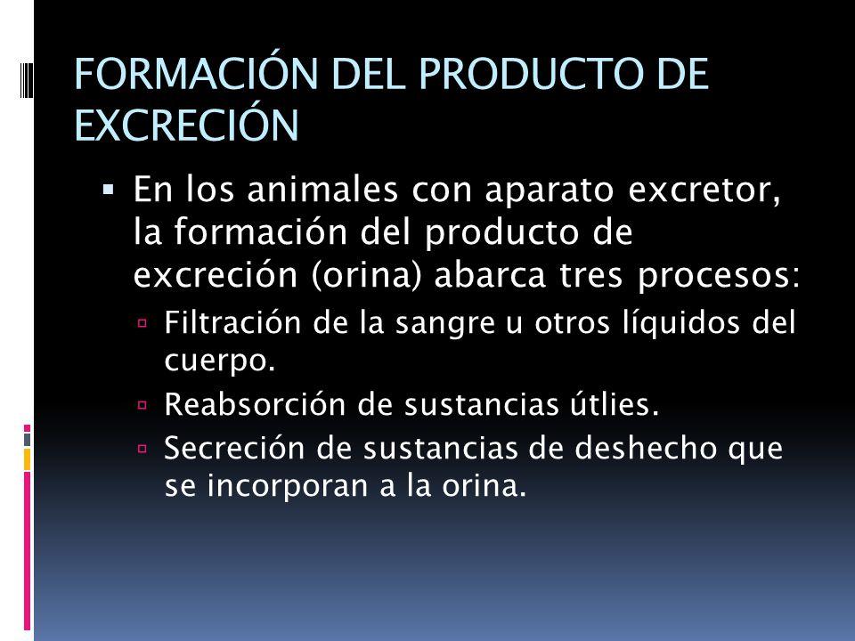 FORMACIÓN DEL PRODUCTO DE EXCRECIÓN