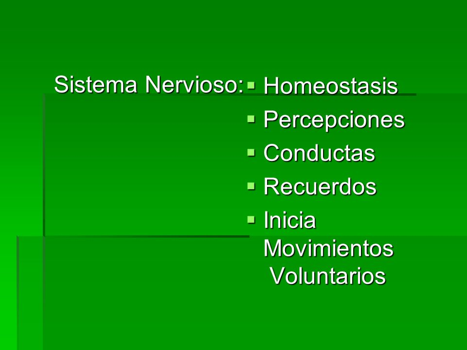 Sistema Nervioso: Homeostasis Percepciones Conductas Recuerdos Inicia Movimientos Voluntarios