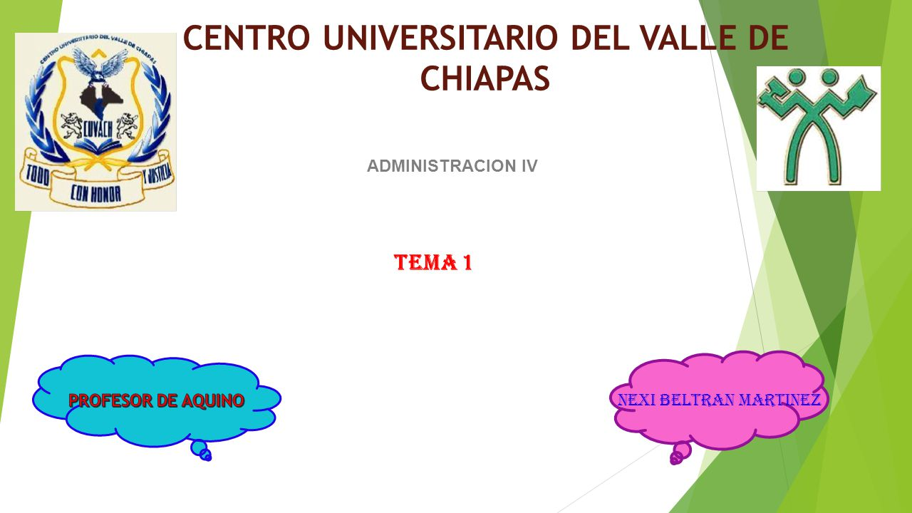 CENTRO UNIVERSITARIO DEL VALLE DE CHIAPAS