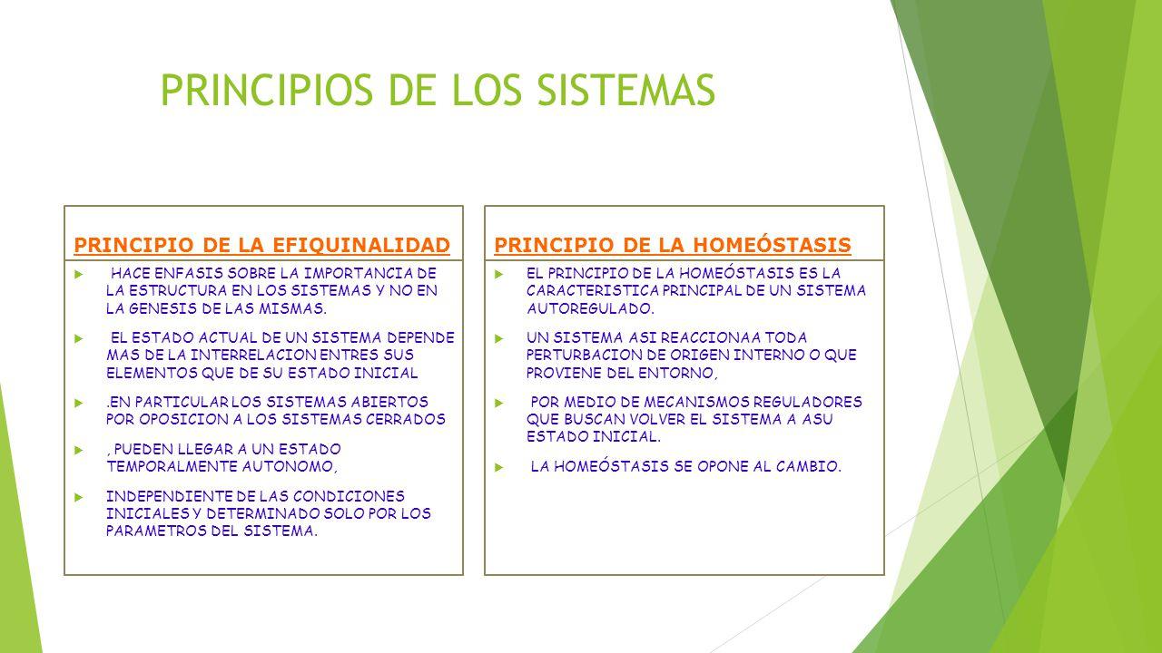PRINCIPIOS DE LOS SISTEMAS
