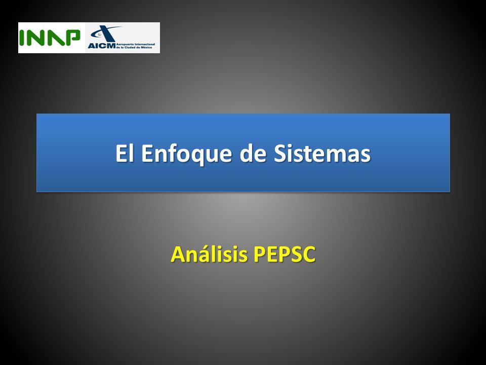 El Enfoque de Sistemas Análisis PEPSC
