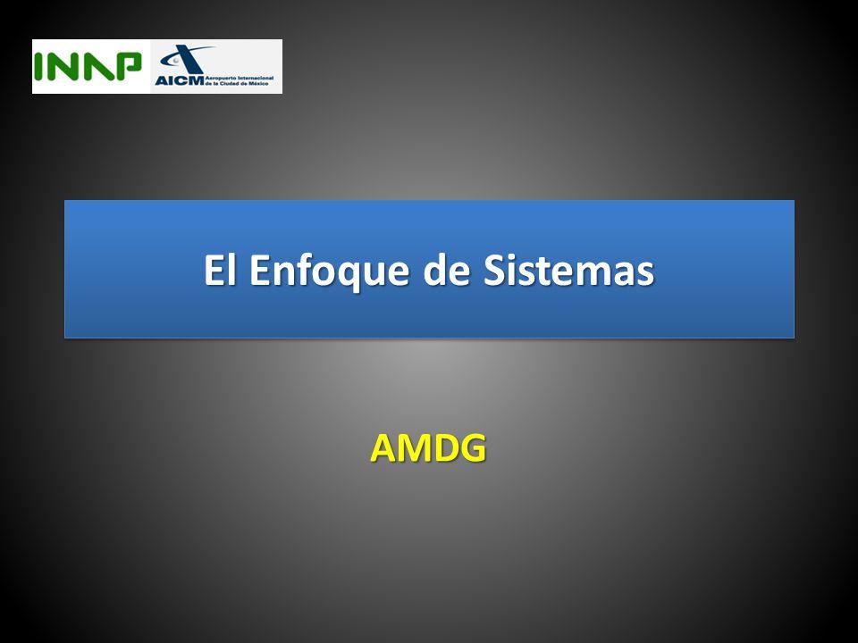 El Enfoque de Sistemas AMDG