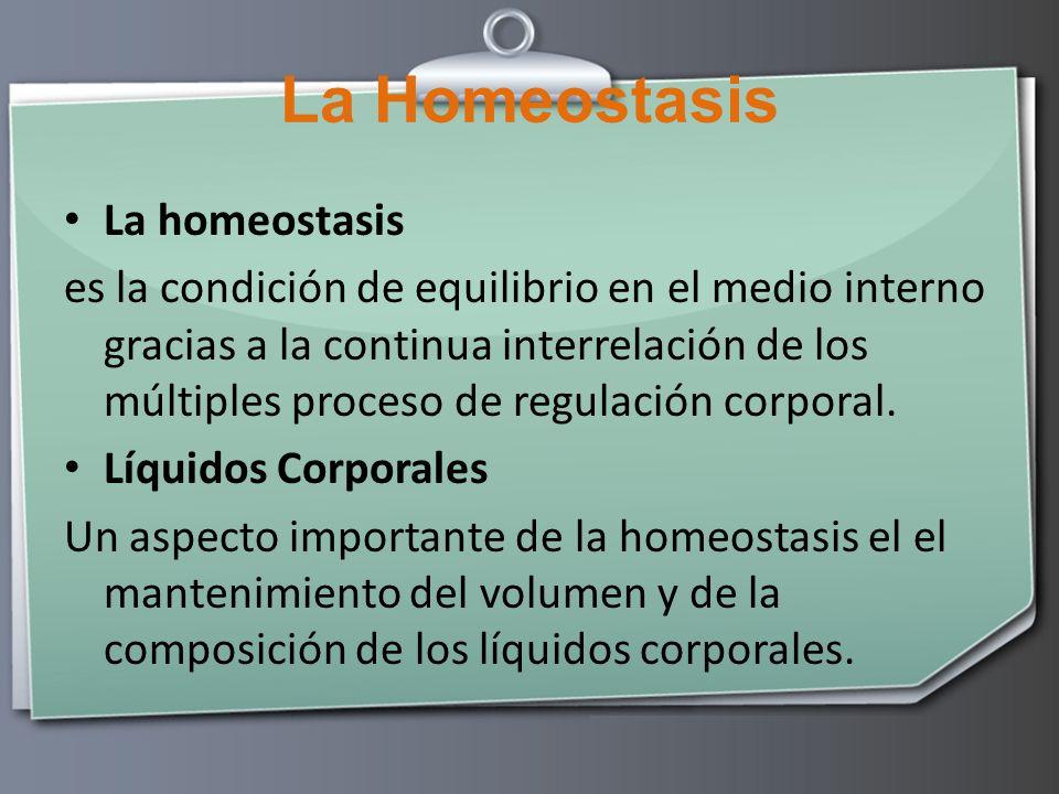 La Homeostasis La homeostasis