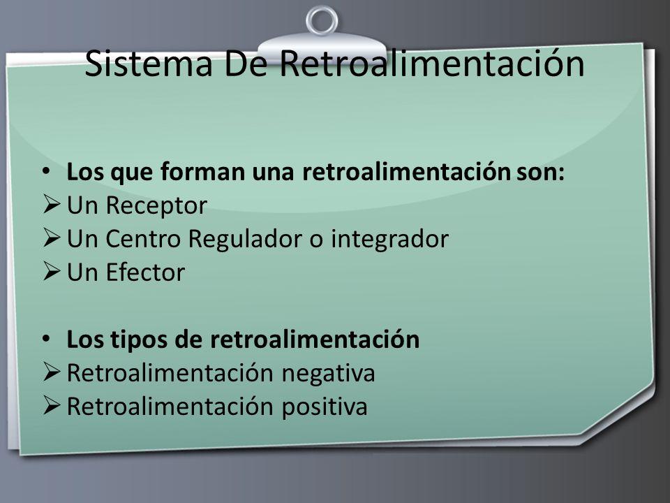 Sistema De Retroalimentación