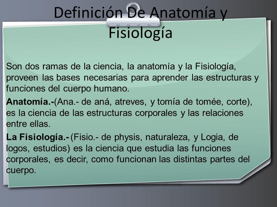 Contemporáneo Anatomía Humana Y Fisiología Definición Colección de ...