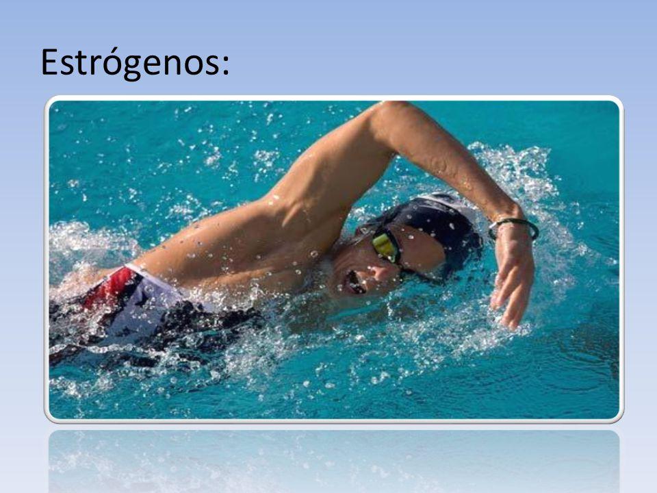 Estrógenos: