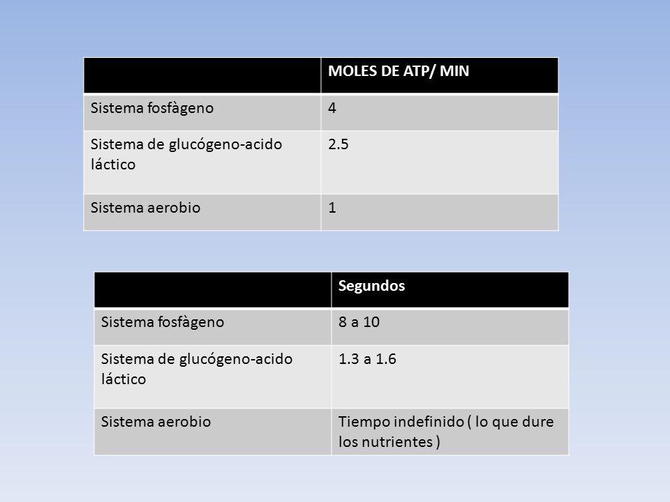 MOLES DE ATP/ MIN Sistema fosfàgeno. 4. Sistema de glucógeno-acido láctico. 2.5. Sistema aerobio.