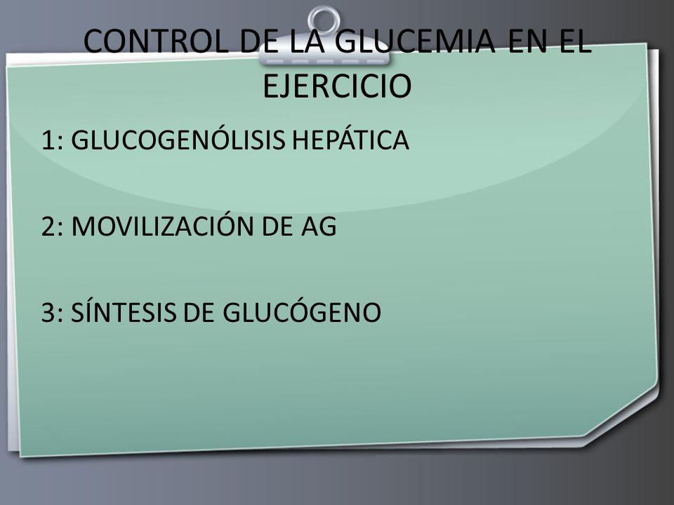 CONTROL DE LA GLUCEMIA EN EL EJERCICIO