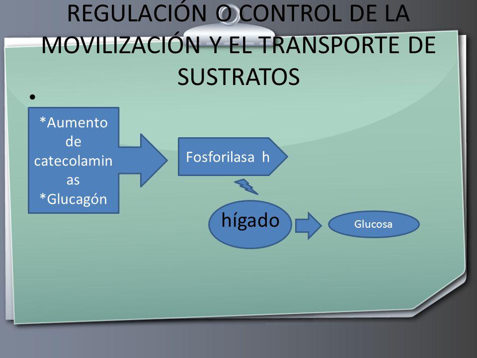 REGULACIÓN O CONTROL DE LA MOVILIZACIÓN Y EL TRANSPORTE DE SUSTRATOS