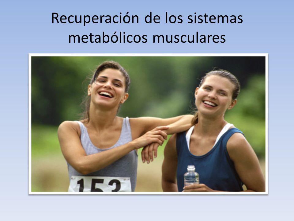 Recuperación de los sistemas metabólicos musculares