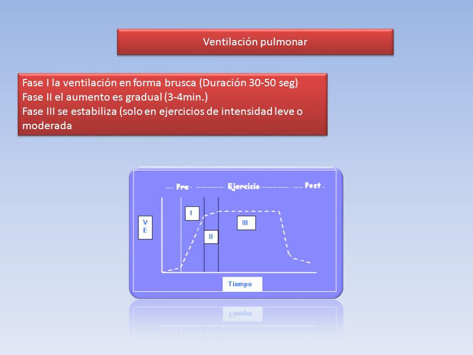 Ventilación pulmonar Fase I la ventilación en forma brusca (Duración 30-50 seg) Fase II el aumento es gradual (3-4min.)