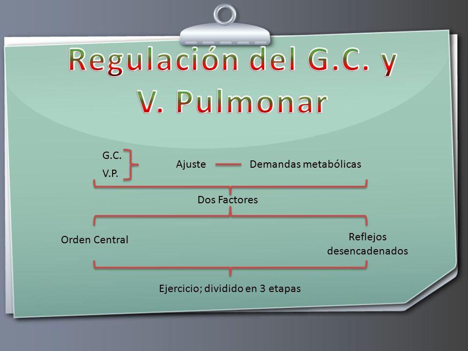 Regulación del G.C. y V. Pulmonar