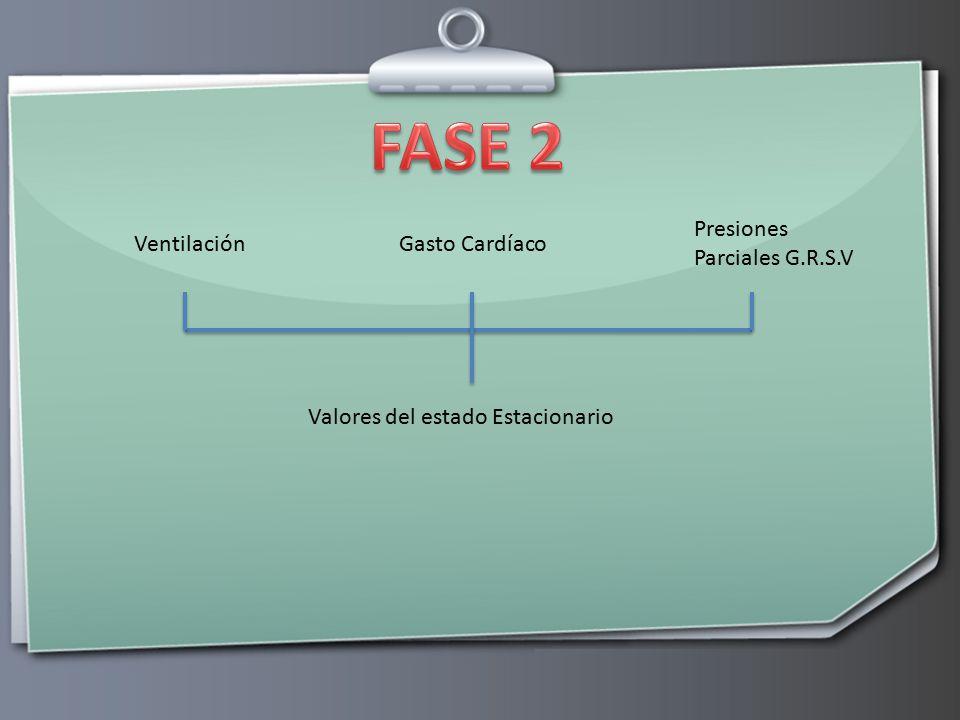FASE 2 Presiones Parciales G.R.S.V Ventilación Gasto Cardíaco