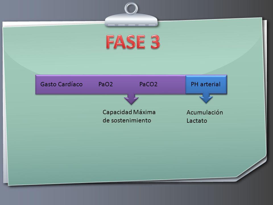 FASE 3 Gasto Cardíaco PaO2 PaCO2 PH arterial
