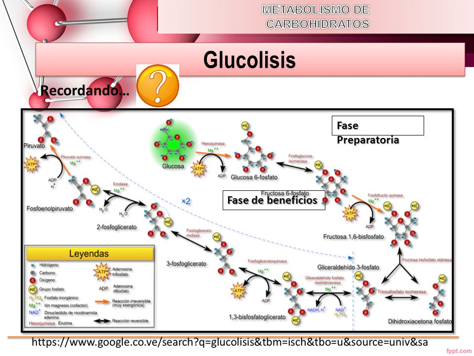 Glucolisis Recordando… METABOLISMO DE CARBOHIDRATOS Fase Preparatoria