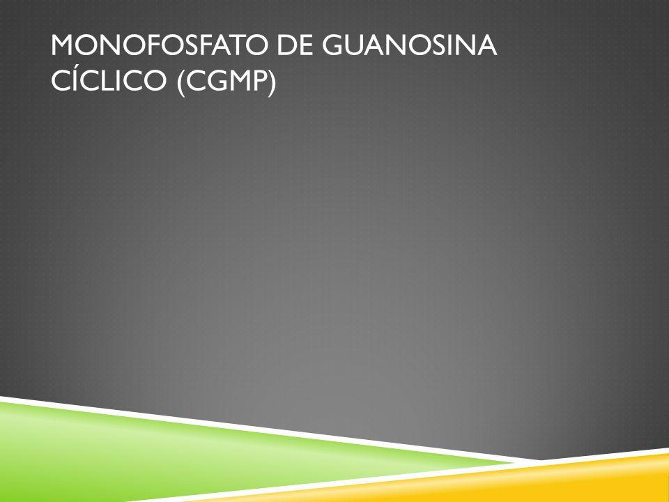 Monofosfato de guanosina cíclico (CGMP)