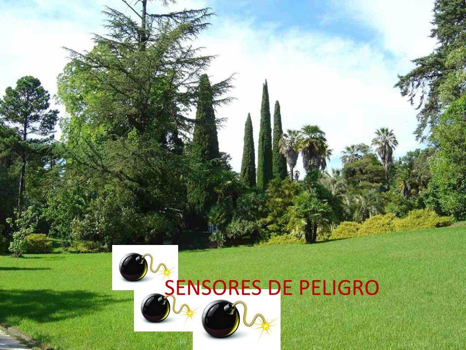 SENSORES DE PELIGRO