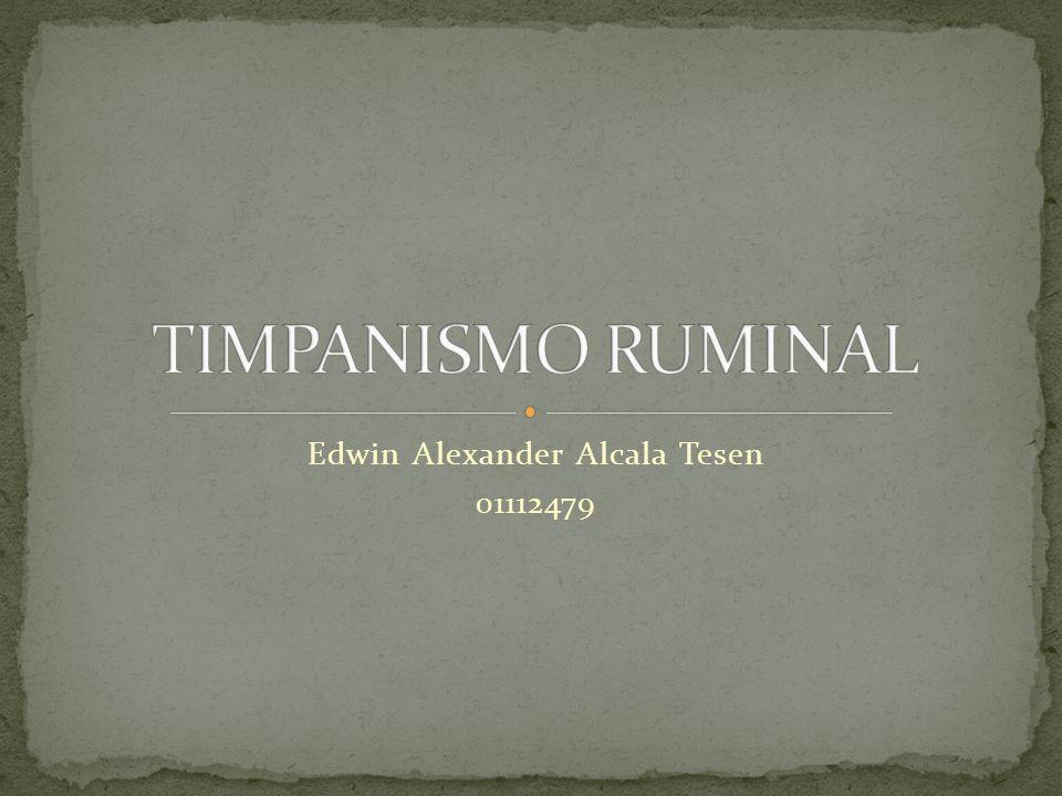 Edwin Alexander Alcala Tesen 01112479