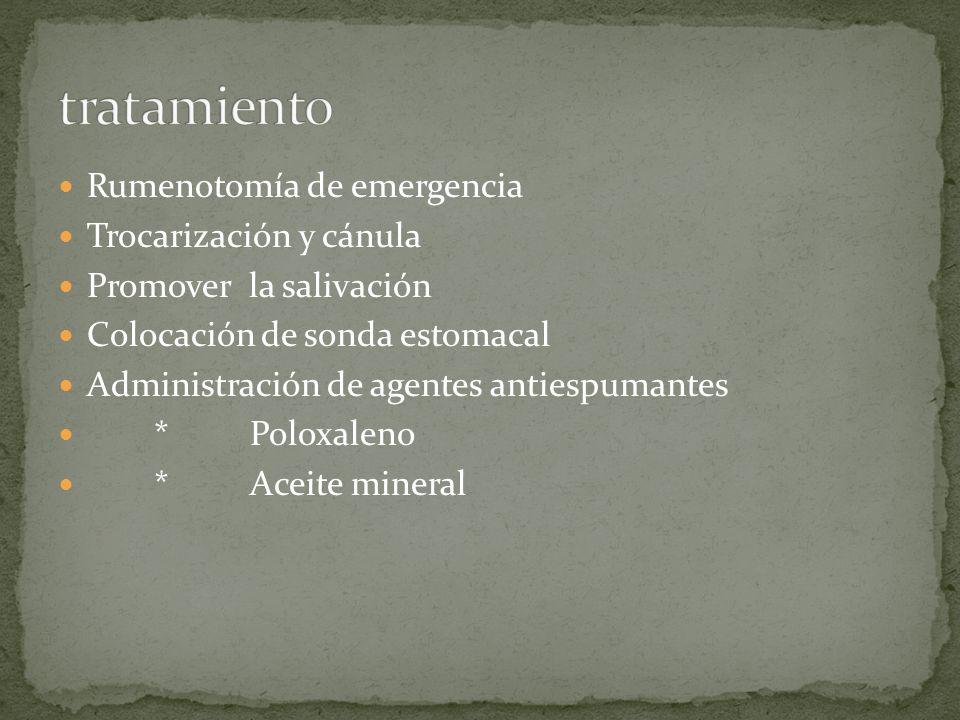 tratamiento Rumenotomía de emergencia Trocarización y cánula