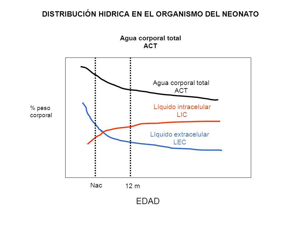 DISTRIBUCIÓN HIDRICA EN EL ORGANISMO DEL NEONATO