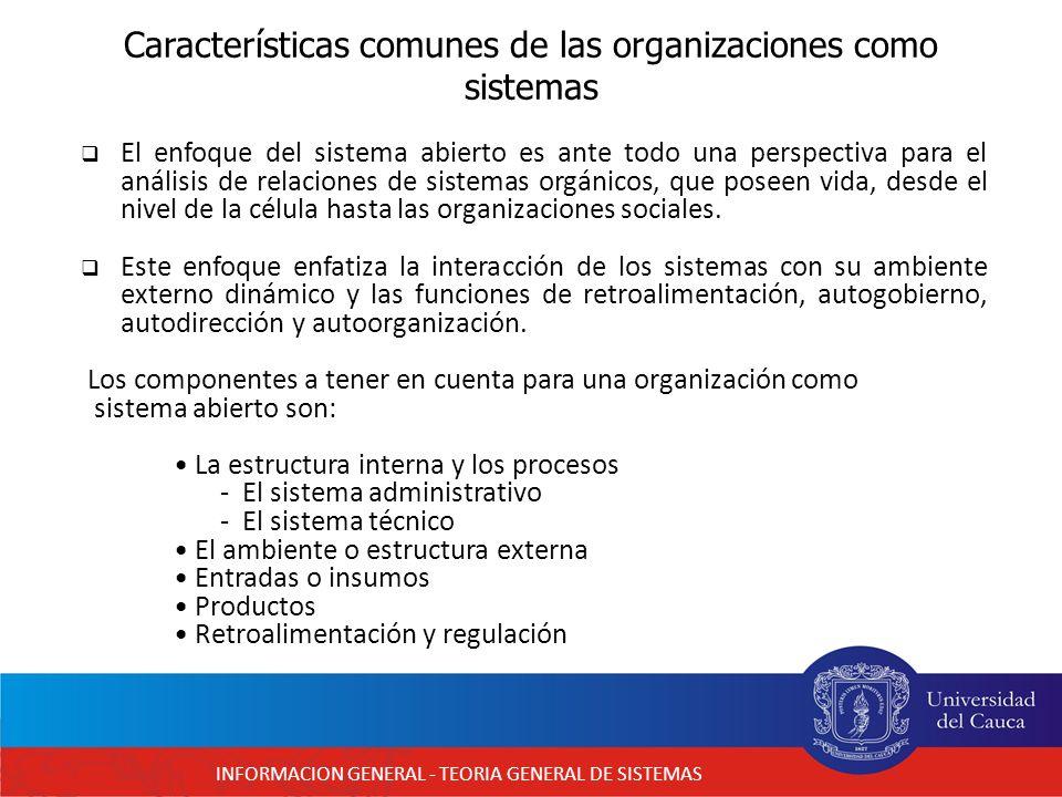 Características comunes de las organizaciones como sistemas