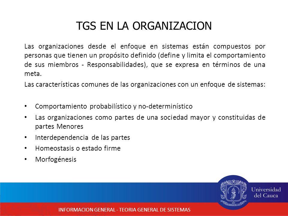 INFORMACION GENERAL - TEORIA GENERAL DE SISTEMAS