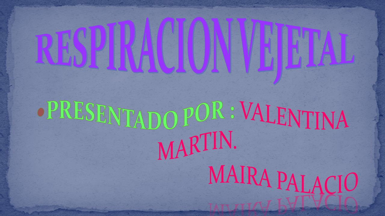 PRESENTADO POR : VALENTINA MARTIN.