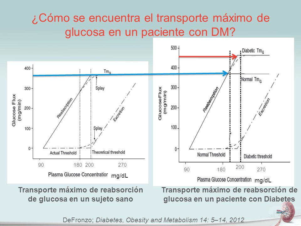 Transporte máximo de reabsorción de glucosa en un sujeto sano
