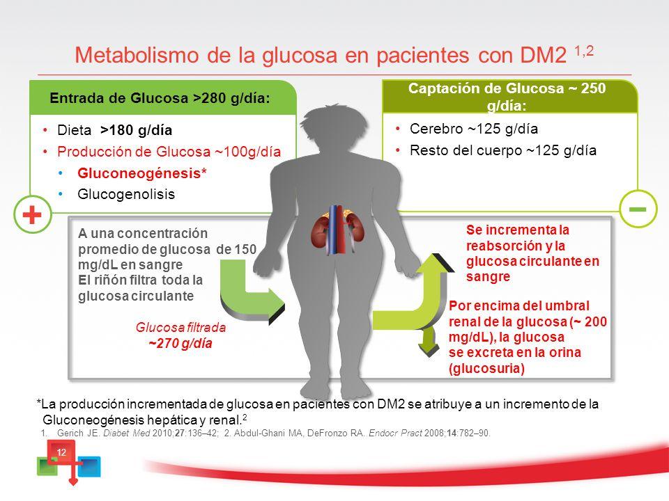 Metabolismo de la glucosa en pacientes con DM2 1,2