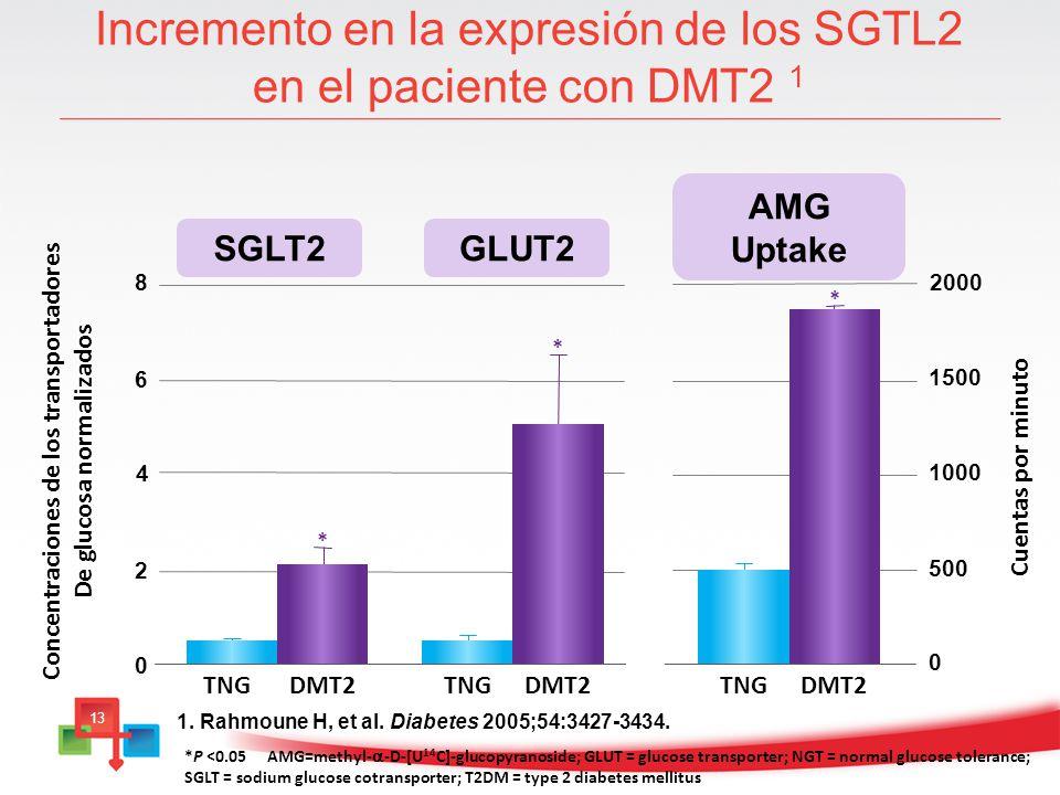 Incremento en la expresión de los SGTL2 en el paciente con DMT2 1