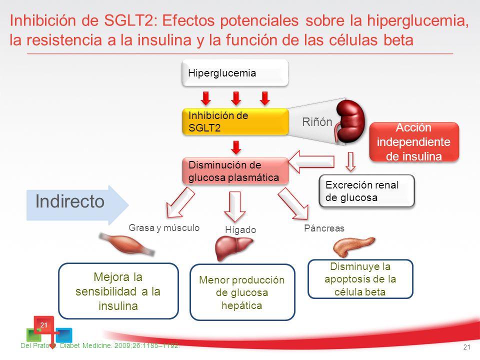 Inhibición de SGLT2: Efectos potenciales sobre la hiperglucemia, la resistencia a la insulina y la función de las células beta