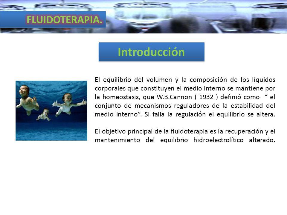 Introducción FLUIDOTERAPIA.