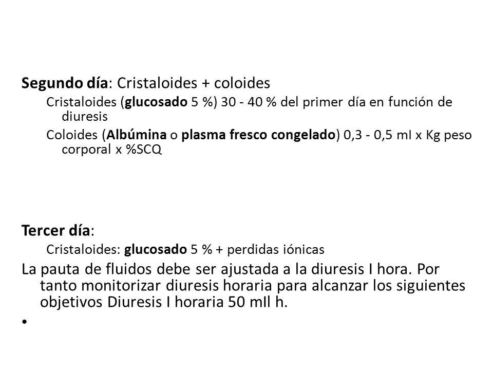 Segundo día: Cristaloides + coloides