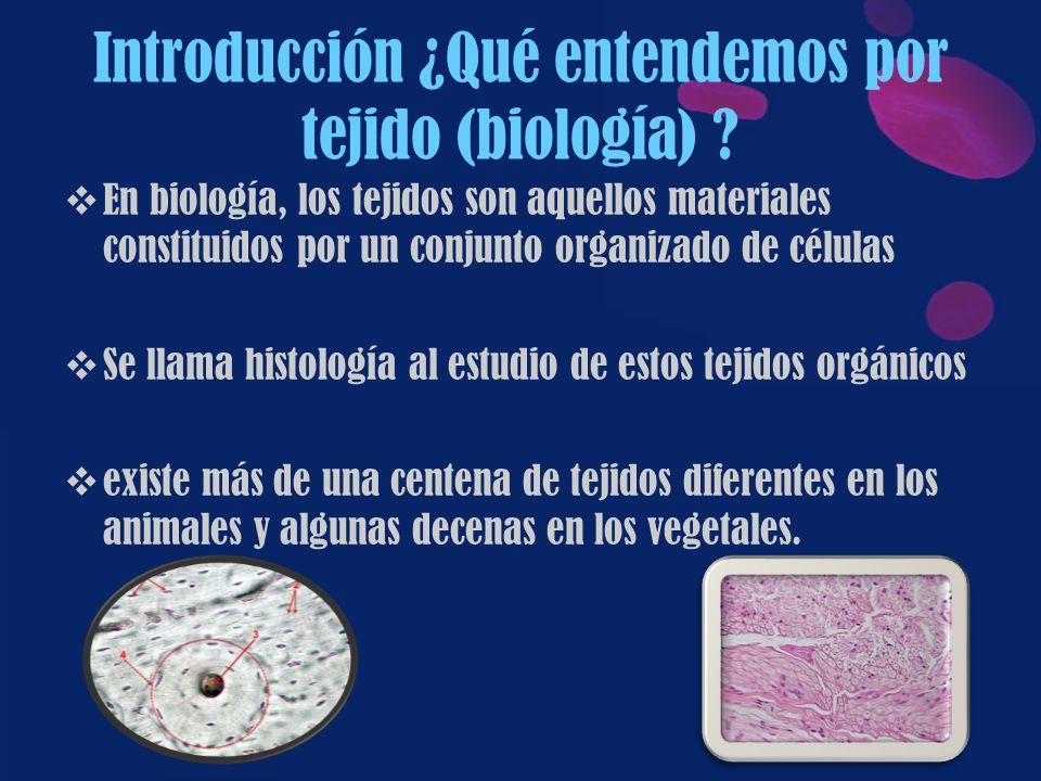 Introducción ¿Qué entendemos por tejido (biología)