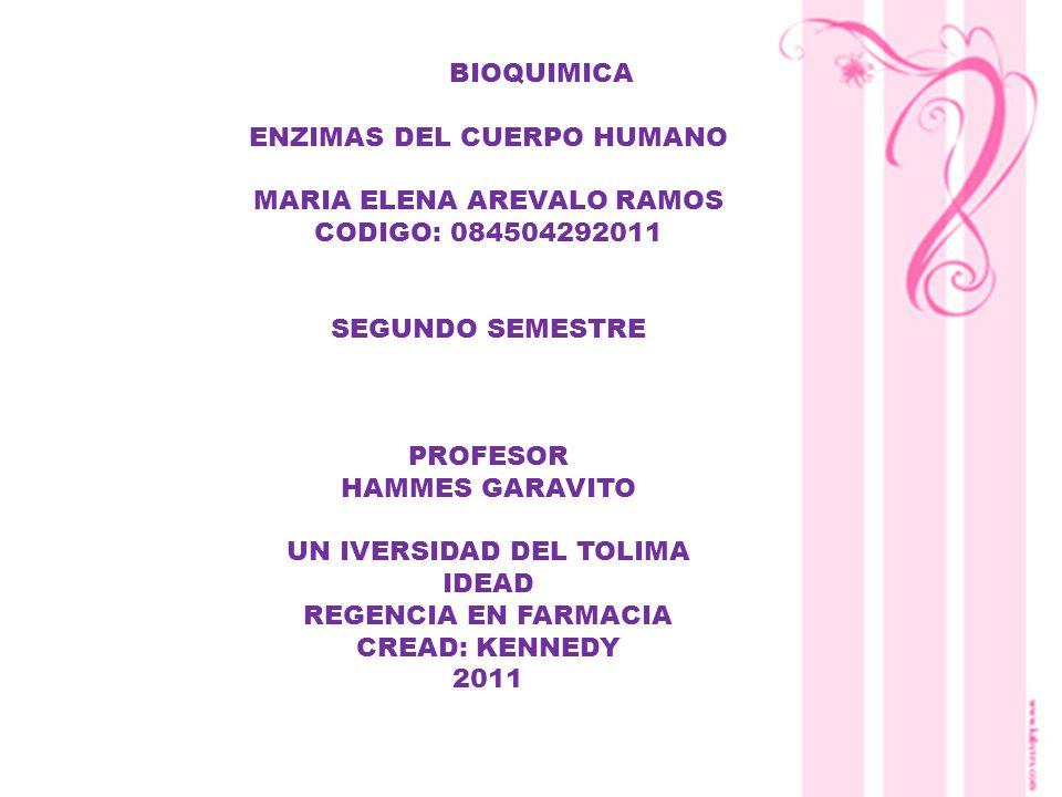 ENZIMAS DEL CUERPO HUMANO MARIA ELENA AREVALO RAMOS