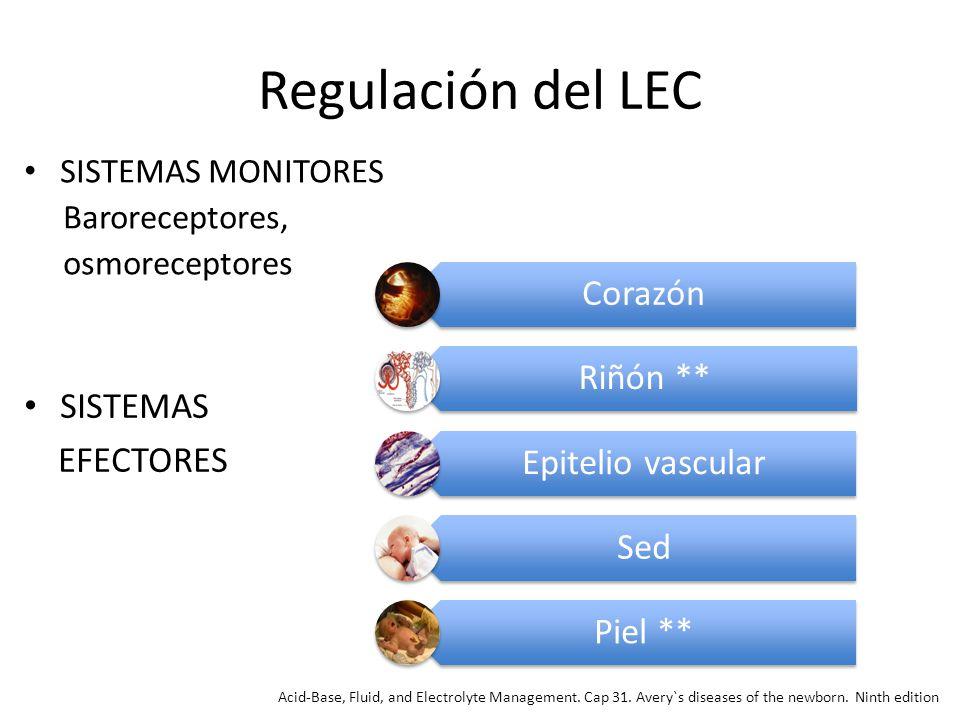 Regulación del LEC Corazón Riñón ** Epitelio vascular SISTEMAS Sed