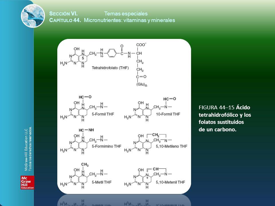 FIGURA 44–15 Ácido tetrahidrofólico y los folatos sustituidos