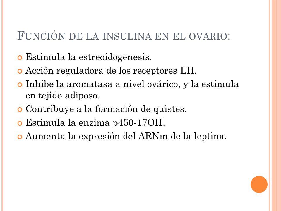 Función de la insulina en el ovario:
