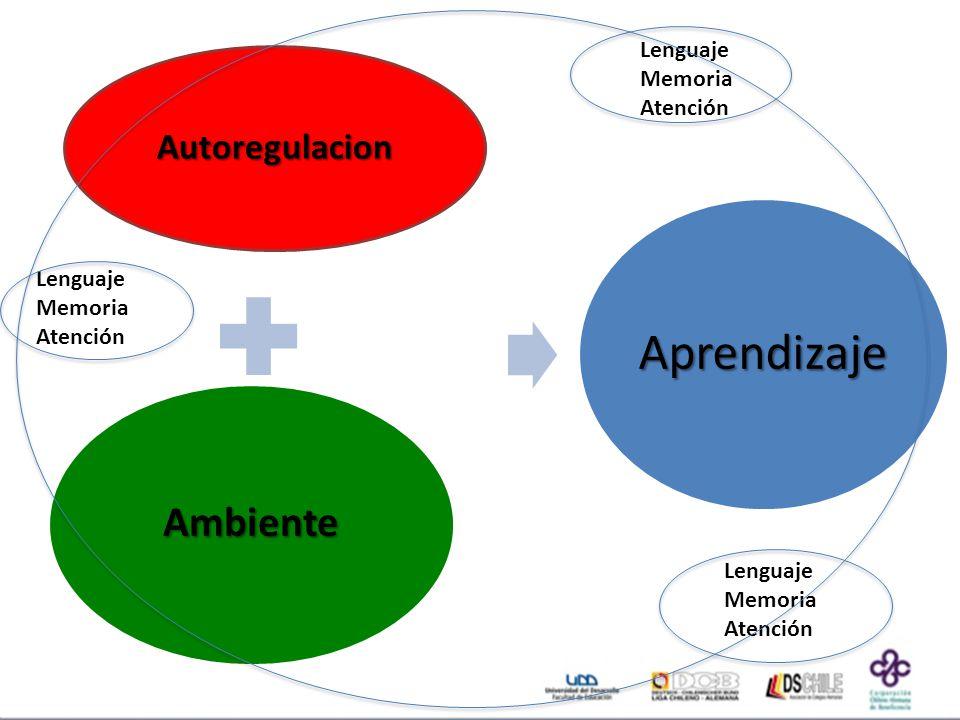 Ambiente Autoregulacion Lenguaje Memoria Atención Lenguaje