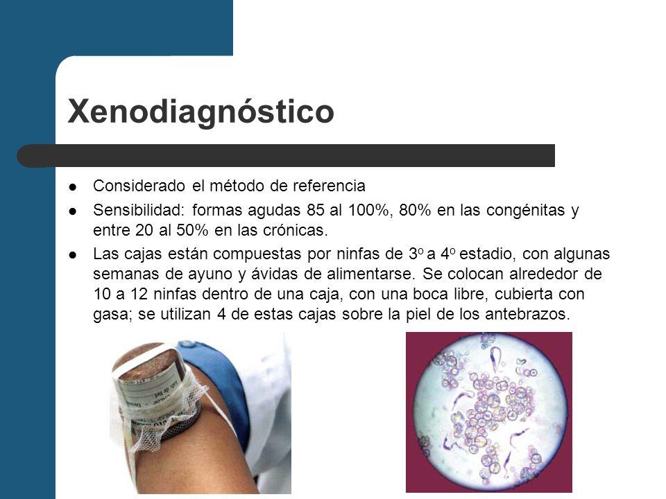 Xenodiagnóstico Considerado el método de referencia