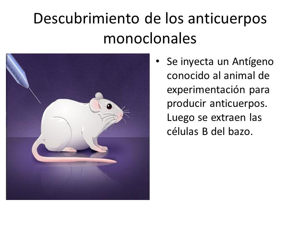 Descubrimiento de los anticuerpos monoclonales