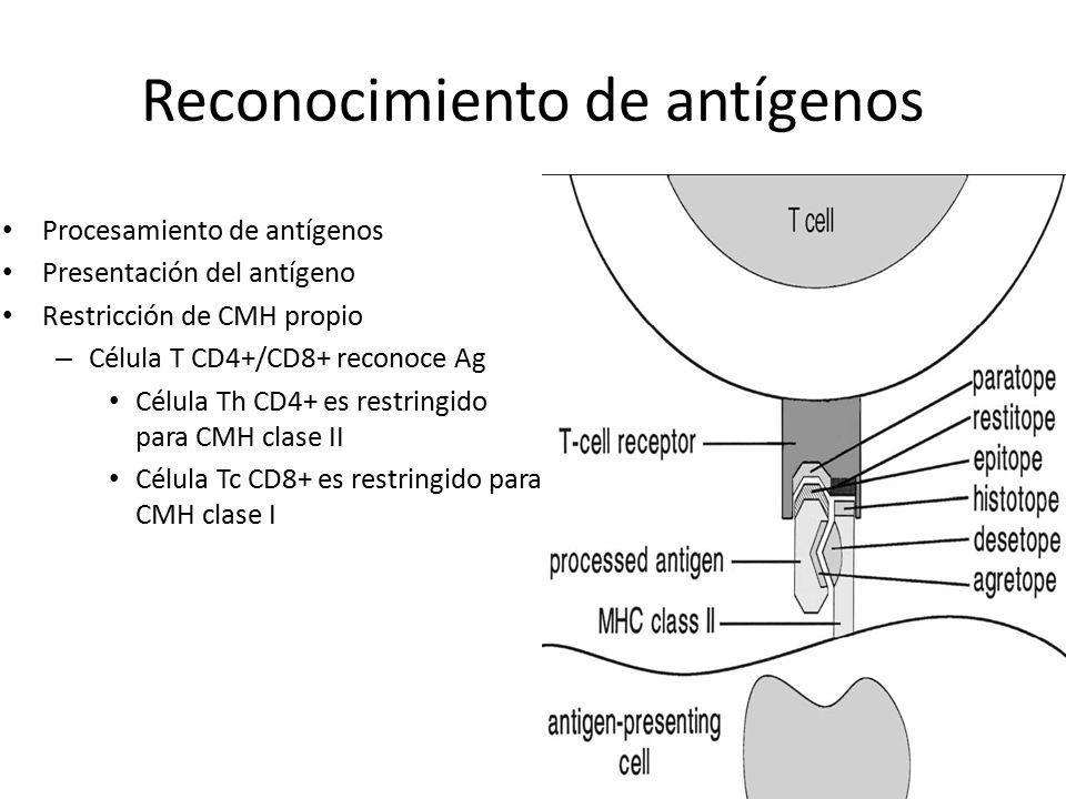 Reconocimiento de antígenos