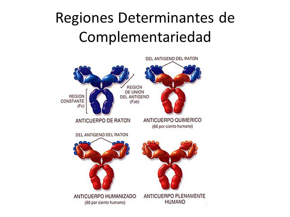Regiones Determinantes de Complementariedad