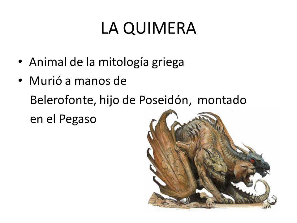 LA QUIMERA Animal de la mitología griega Murió a manos de
