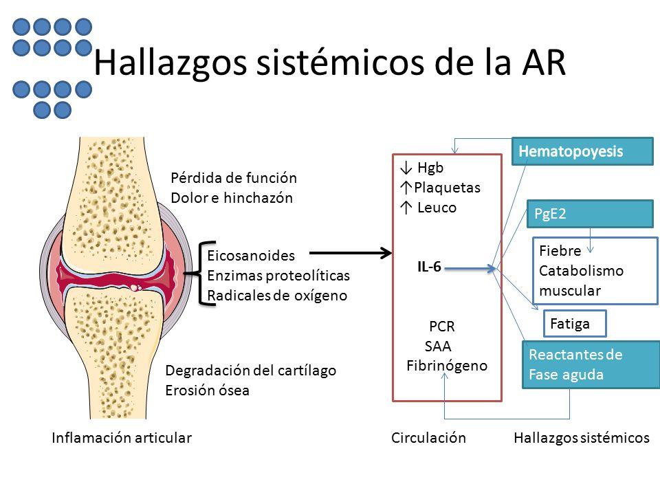 Hallazgos sistémicos de la AR