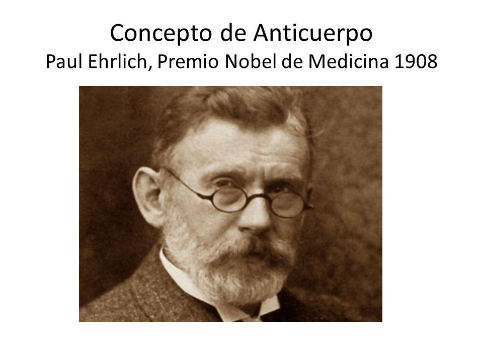 Concepto de Anticuerpo Paul Ehrlich, Premio Nobel de Medicina 1908