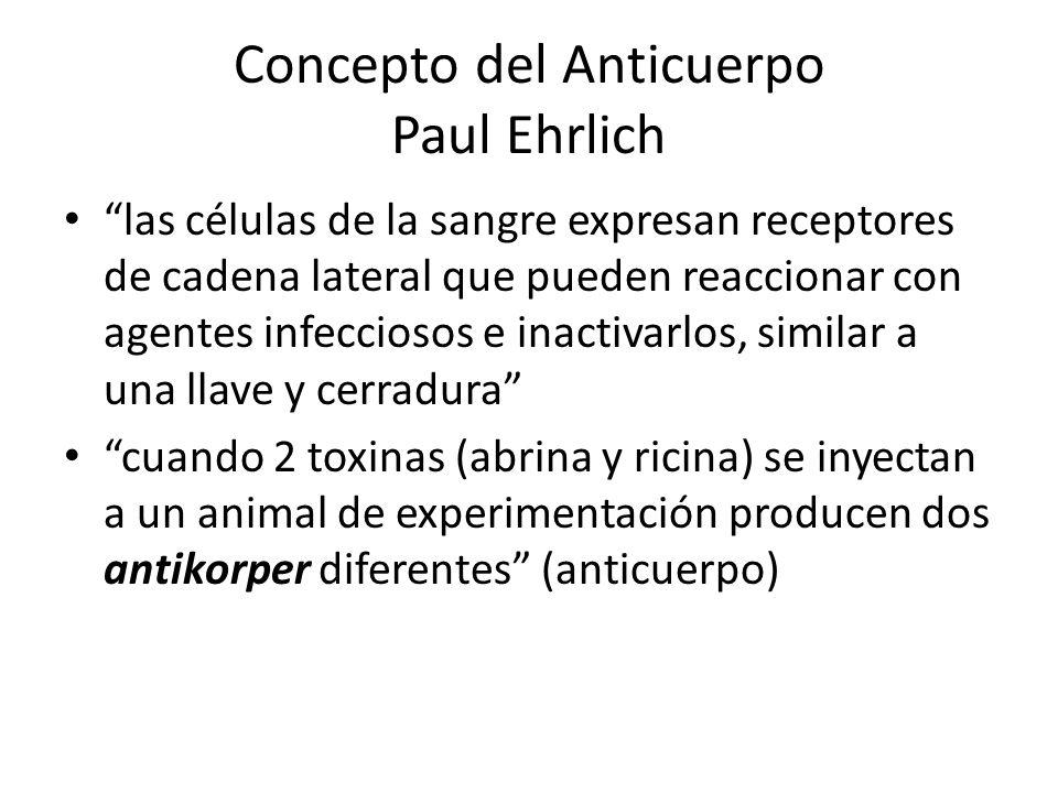 Concepto del Anticuerpo Paul Ehrlich