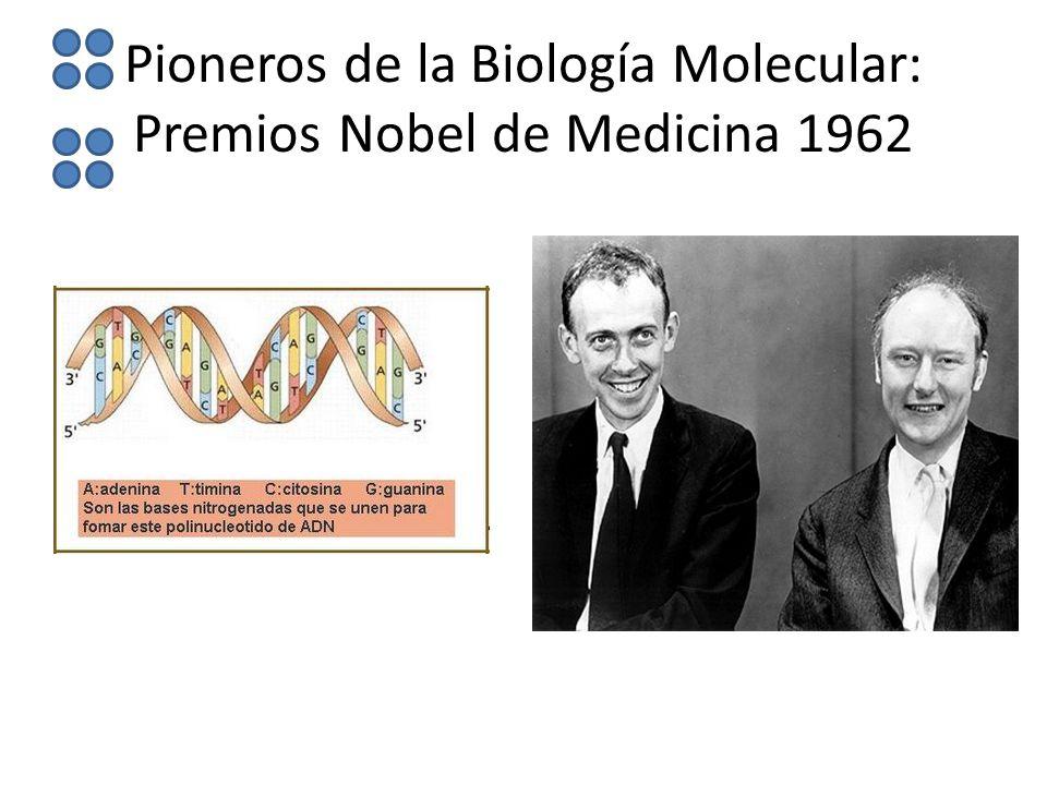 Pioneros de la Biología Molecular: Premios Nobel de Medicina 1962
